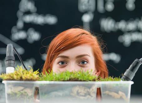 Mädchen hinter einer Kiste mit Steinen und Gras